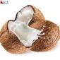 椰子香精 食品用�料烘焙炒�添加�� �庥粢�子香�� �S家直�N